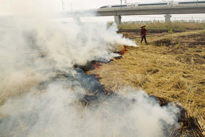 2013年11月06日,浙江省某地村民焚烧秸秆,烟雾缭绕。***_***
